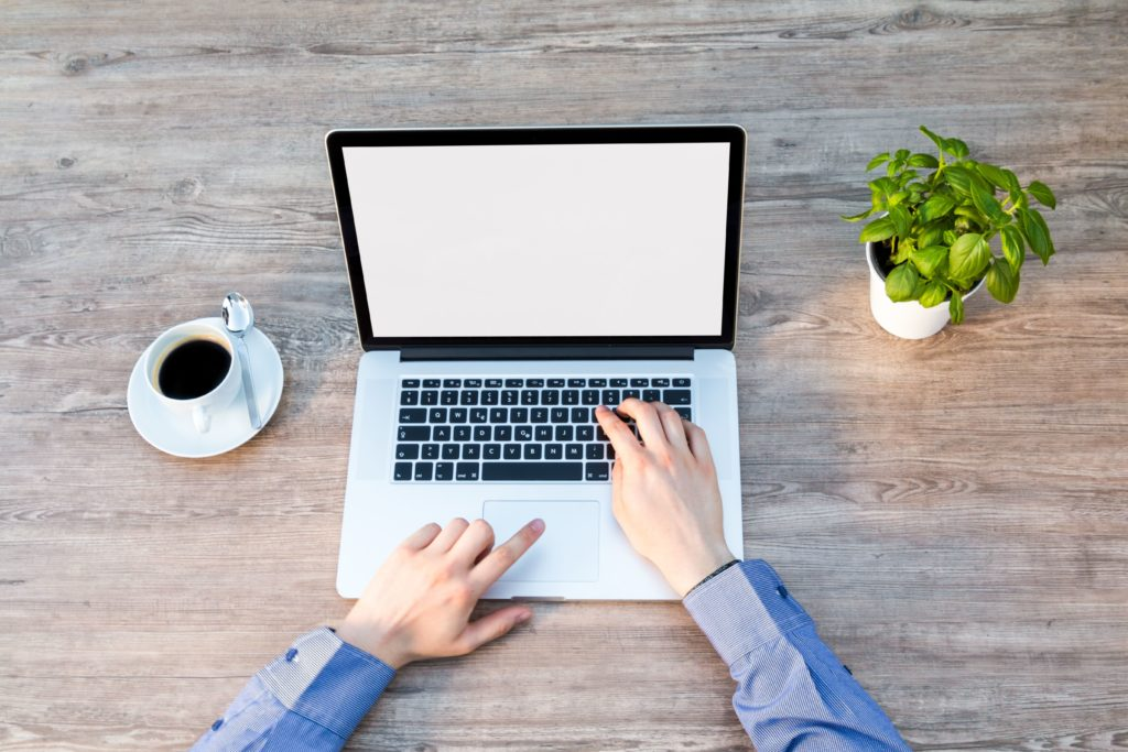 Man's hands typing on computer with a small plant on the right and cup of coffee on the left.
